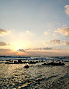 OceanDawn